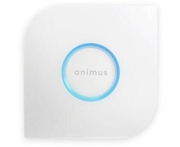 Animus Home Animus Home Animus Heart