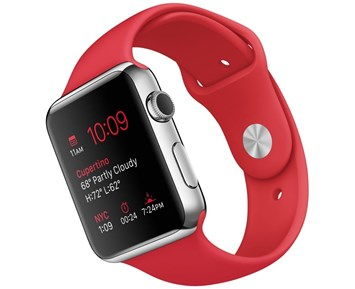 Apple 42mm Stainless Steel Case with